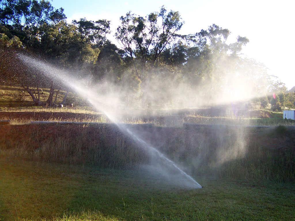 regenwasser sammeln - welche möglichkeiten gibt es?